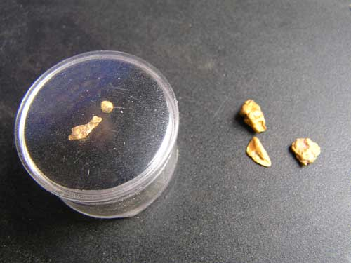 Gold Nuggets Found