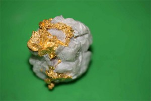 Jack and Jill's gold specimen found in quartz