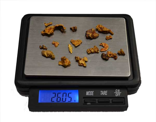 18 Gold Nuggets Found using a Rooster Booster & Nugget Finder Coil