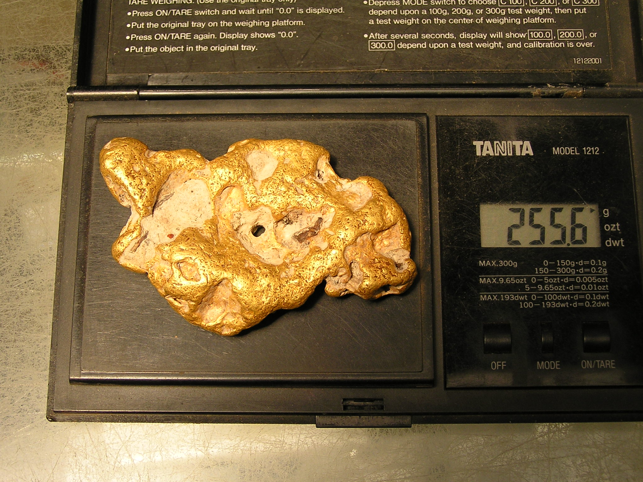 256 gram gold nugget