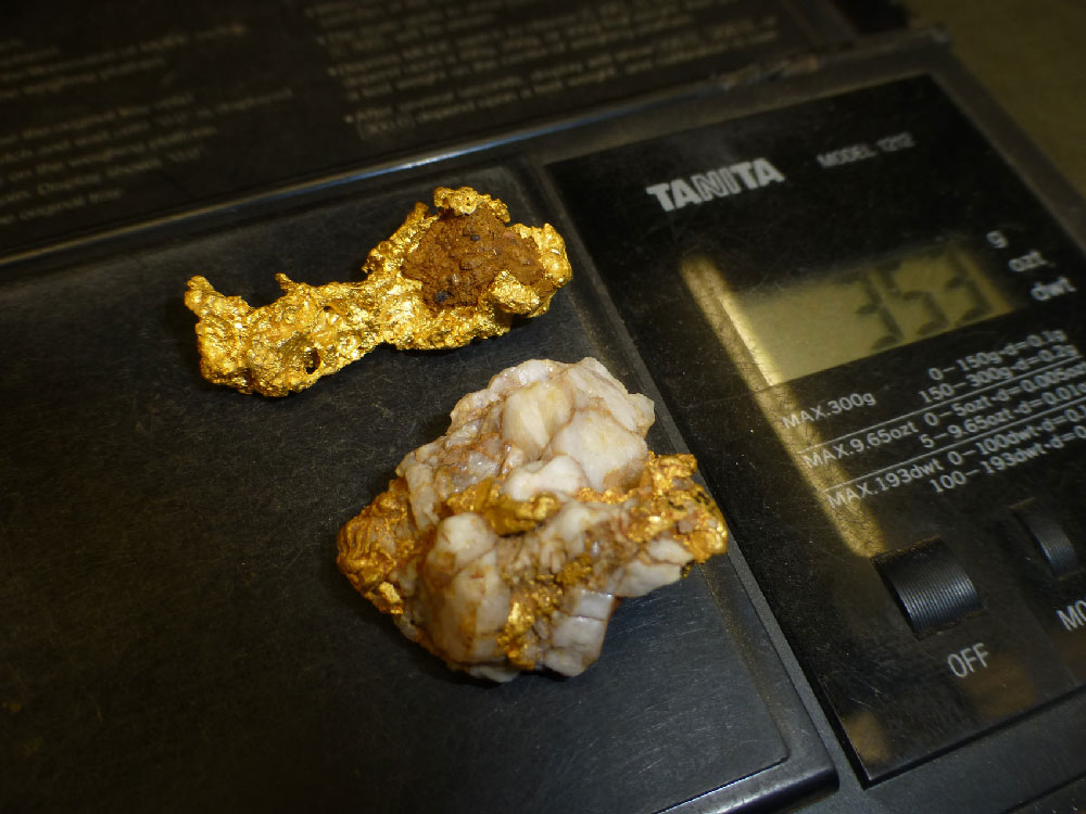 Minelab Eureka Gold finds Gold